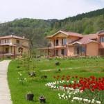 ТОП 5 планински курорта в България